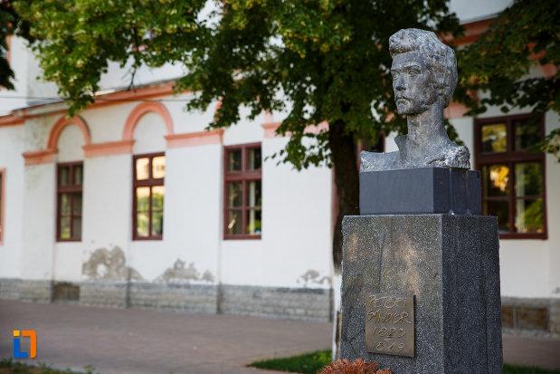 bustul-lui-petofi-sandor-din-jimbolia-judetul-timis-imagine-din-lateral.jpg