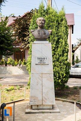 bustul-lui-teodor-c-bals-din-darabani-judetul-botosani.jpg