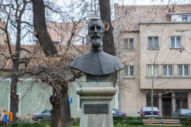 bustul-lui-timotei-cipariu-grupul-statuar-din-parcul-astra-din-sibiu-judetul-sibiu.jpg