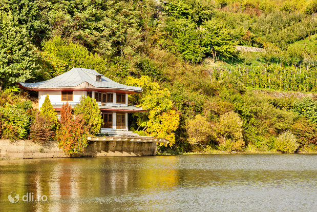 cabana-langa-lacul-din-calinesti-oas-judetul-satu-mare.jpg