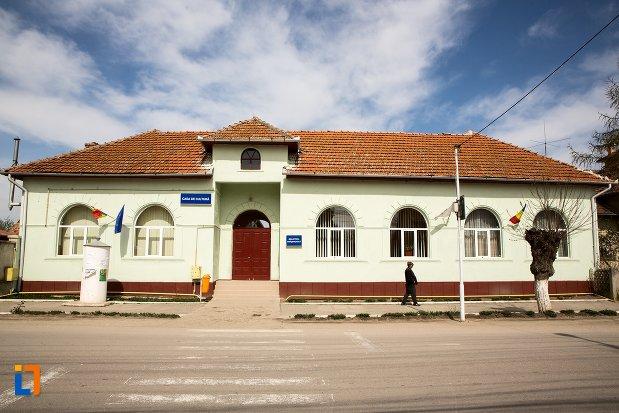 casa-de-cultura-si-biblioteca-oraseneasca-din-teius-judetul-alba.jpg
