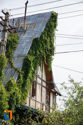 casa-generalului-ceausu-din-breaza-judetul-prahova-acoperita-cu-plante-cataratoare.jpg