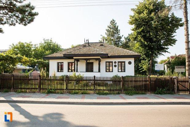 casa-memoriala-nicolae-iorga-din-botosani-judetul-botosani.jpg