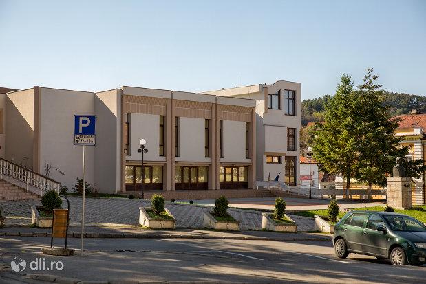 casa-municipala-de-cultura-din-zalau-judetul-salaj-vazuta-din-lateral.jpg