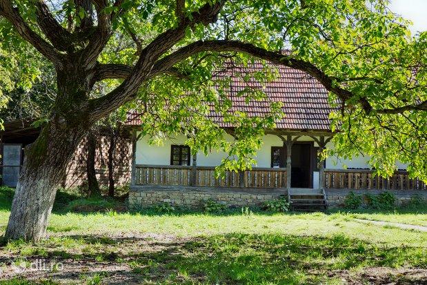 casa-si-curte-din-cadrul-muzeului-satului-osenesc-din-negresti-oas-judetul-satu-mare.jpg