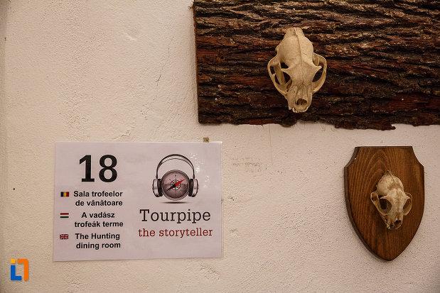 castelul-corvinilor-azi-muzeu-din-hunedoara-judetul-hunedoara-sala-trofeelor-de-vanatoare.jpg