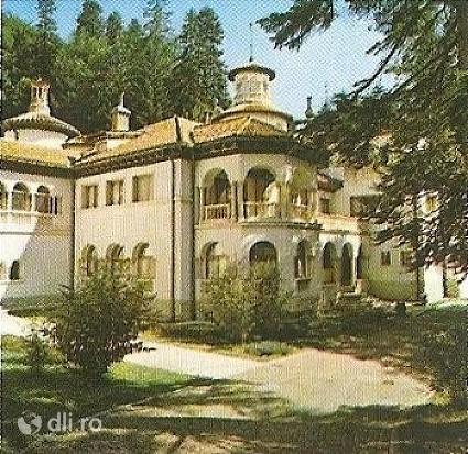 castelul-foisor.jpg