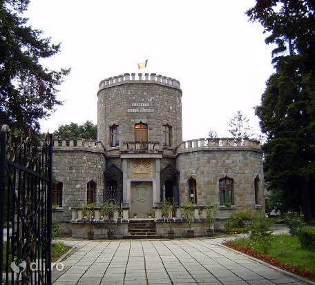 castelul-iulia-hasdeu.jpg