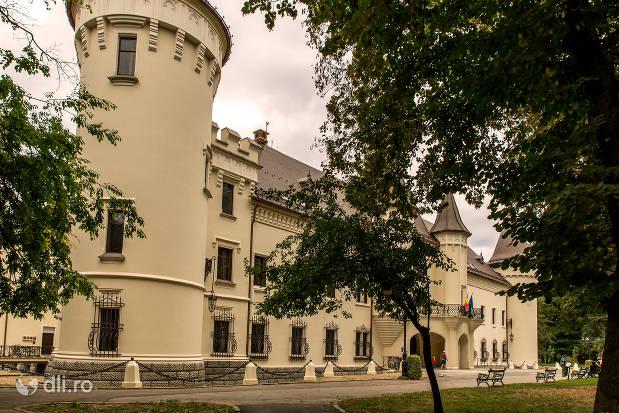 castelul-karolyi-din-carei-2.jpg