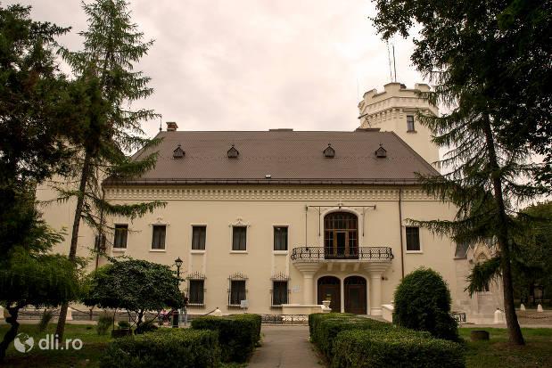 castelul-karolyi-din-carei-vedere-de-la-intrarea-in-parc.jpg