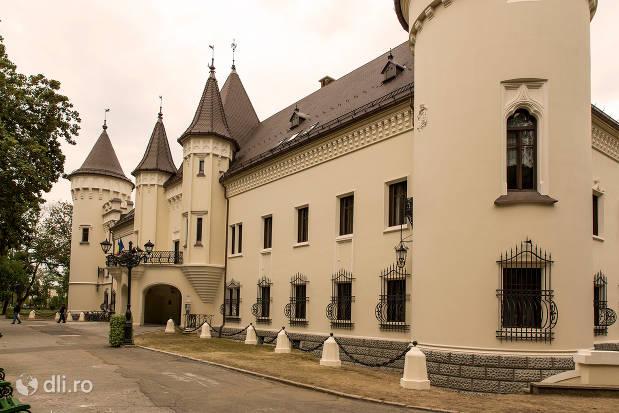 castelul-karolyi-din-carei-vedere-dintr-o-parte.jpg
