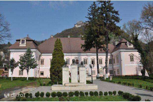 castelul-magna-curia.jpg