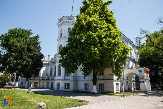castelul-nako-1864-muzeul-bartok-bela-din-sannicolau-mare-vazut-din-gradina.jpg