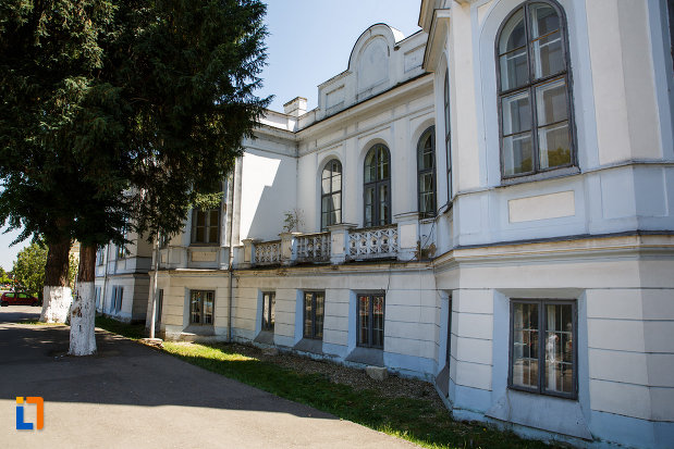 castelul-nako-1864-muzeul-bartok-bela-din-sannicolau-mare-vazut-din-lateral.jpg