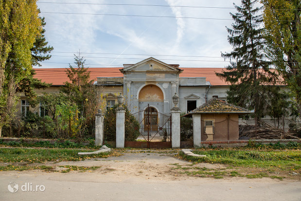 castelul-zichy-din-diosig-judetul-bihor.jpg