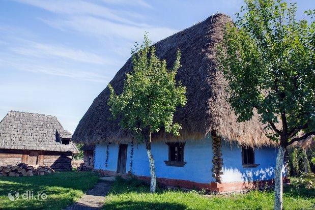 casuta-oseneasca-din-muzeul-satului-osenesc-din-negresti-oas-judetul-satu-mare.jpg