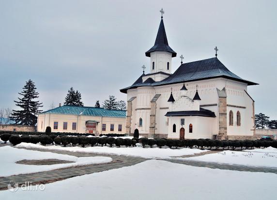 catedrala-episcopala-roman.jpg