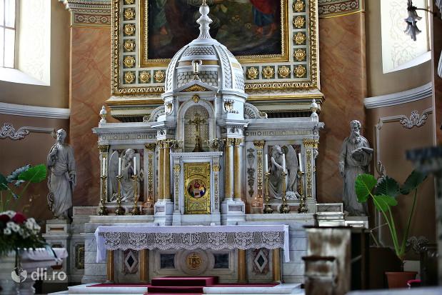catedrala-romano-catolica-dieceza-de-satu-mare-altarul-vazut-de-aproape.jpg