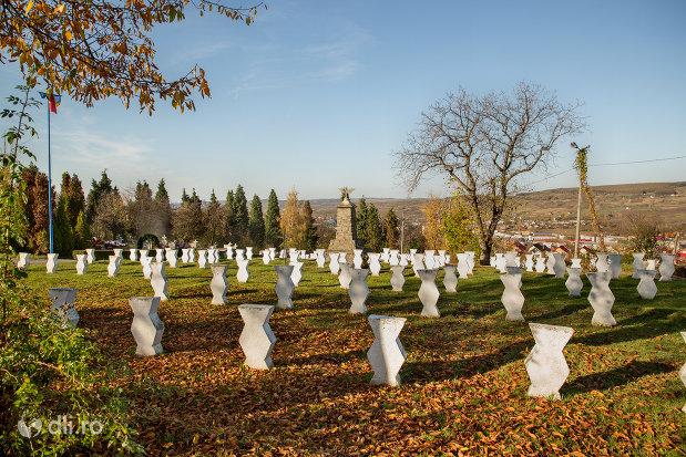 cimitirul-eroilor-din-zalau-judetul-salaj-privit-din-spate.jpg