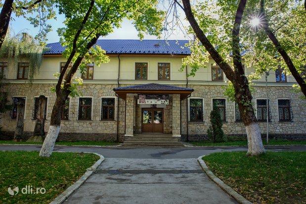 cladirea-muzeul-tarii-oasului-din-negresti-oas-judetul-satu-mare.jpg