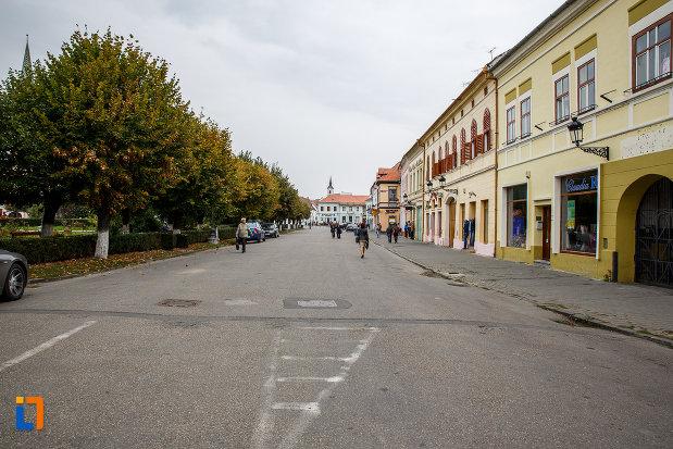 cladiri-istorice-din-orasul-medias-judetul-sibiu.jpg