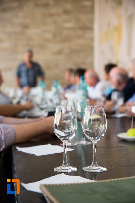 comisie-de-degustare-vinuri-crama-muzeu-murfatlar-judetul-constanta.jpg
