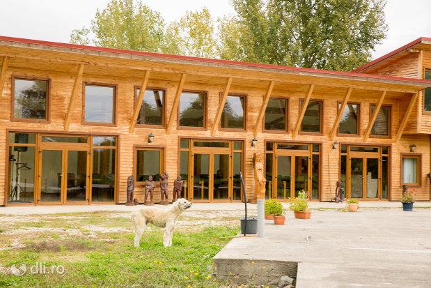 complexul-lacul-junior-din-valea-vinului-judetul-satu-mare.jpg