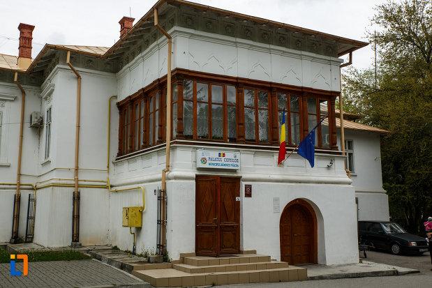 conacu-socoteanu-lahovari-azi-palatul-copiilor-din-ramnicu-valcea-judetul-valcea-imagine-cu-intrarea-in-cladire.jpg