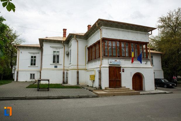 conacu-socoteanu-lahovari-azi-palatul-copiilor-din-ramnicu-valcea-judetul-valcea.jpg