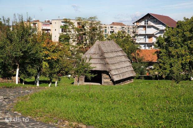 constructie-din-lemn-muzeul-satului-osenesc-din-negresti-oas-judetul-satu-mare.jpg
