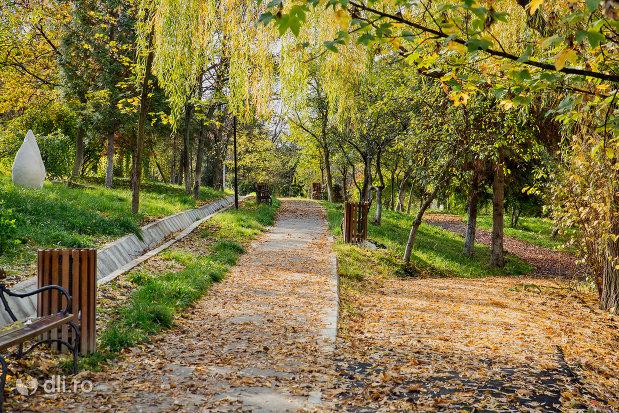 copaci-din-parcul-central-din-zalau-judetul-salaj.jpg