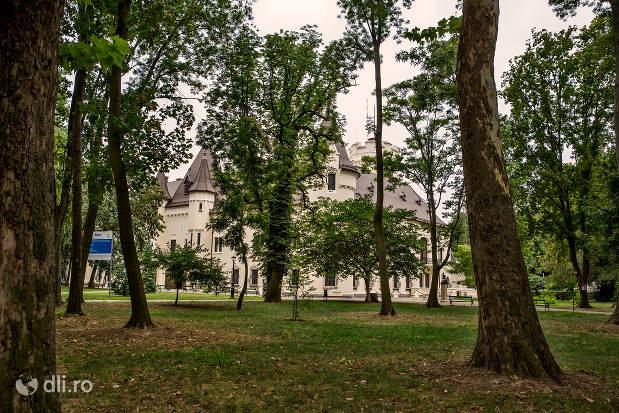 copaci-din-parcul-dendrologic-carei.jpg