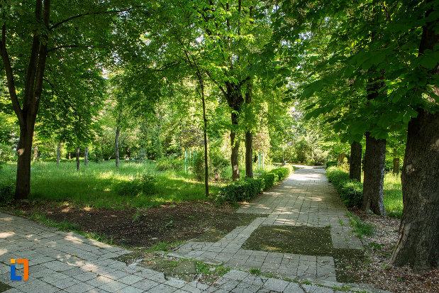 copaci-din-parcul-general-dragalina-din-drobeta-turnu-severin-judetul-mehedinti.jpg