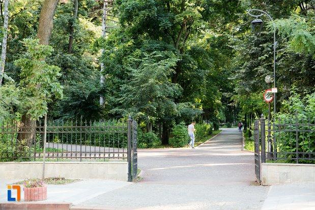 copaci-din-parcul-mihai-eminescu-din-botosani-judetul-botosani.jpg