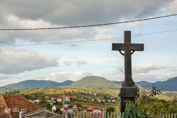 cruce-din-curtea-bisericii-ortodoxa-din-boinesti-judetul-satu-mare.jpg