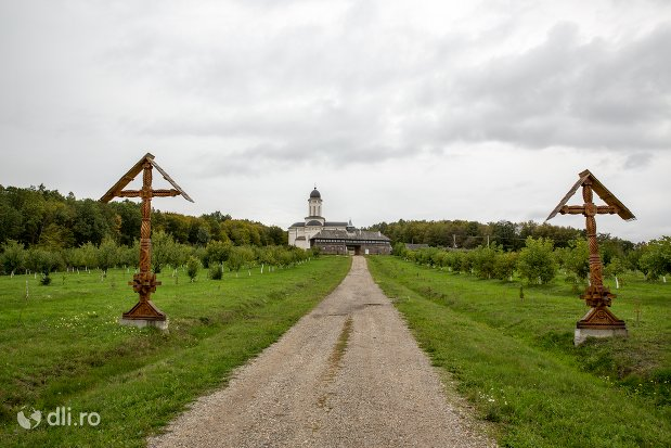 cruci-de-la-intrare-in-curtea-manastirii-marius-judetul-satu-mare.jpg