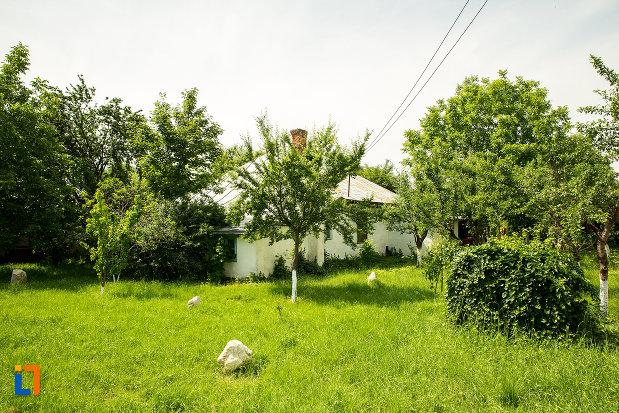 curte-si-casa-din-str-tudor-vladimirescu-din-ramnicu-sarat-judetul-buzau.jpg
