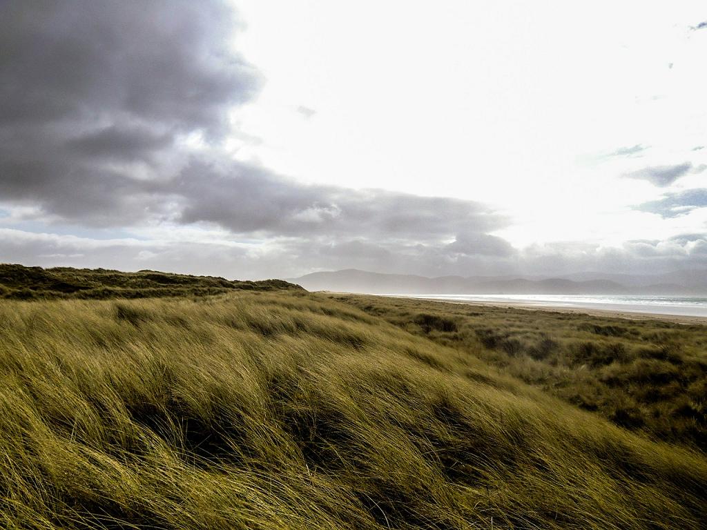 dealuri Irlanda