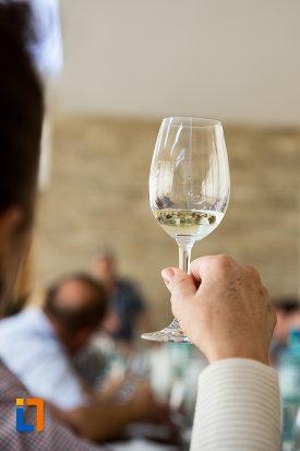 degustarea-vinurilor-crama-muzeu-murfatlar-judetul-constanta.jpg