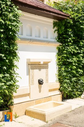 detalii-ornamentale-de-la-vila-florica-din-stefanesti-judetul-arges.jpg