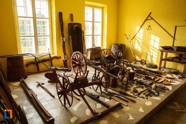 diverse-unelte-mestesugaresti-expuse-la-conacul-theodor-bals-azi-muzeul-nordului-din-darabani-judetul-botosani.jpg