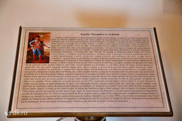 documente-despre-istoria-cetatii-din-ardud-judetul-satu-mare.jpg