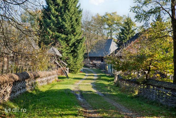 drum-de-tara-din-muzeul-satului-din-sighetu-marmatiei-judetul-maramures.jpg