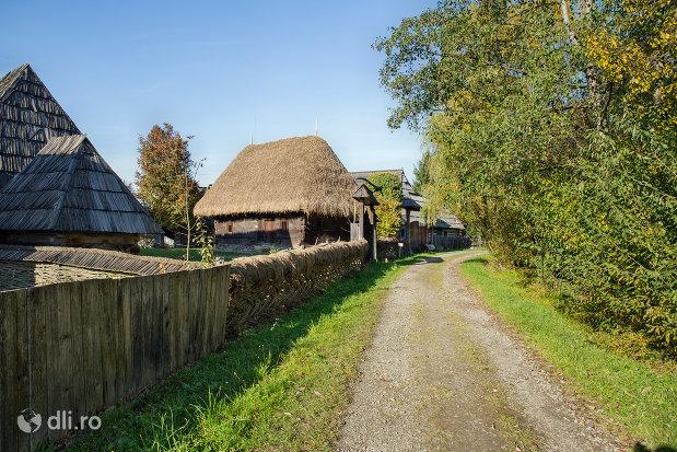 drum-din-cadrul-muzeului-satului-din-sighetu-marmatiei-judetul-maramures.jpg