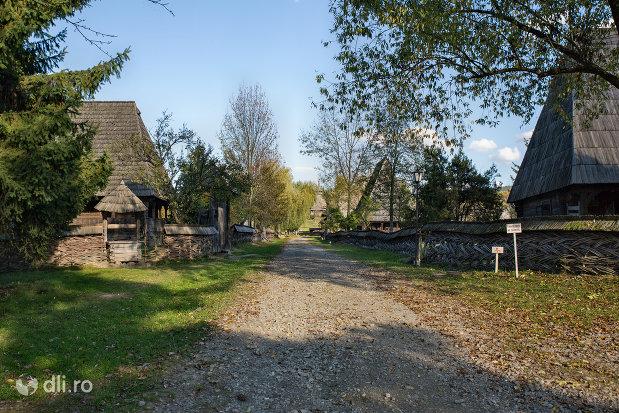 drumul-din-muzeul-satului-din-sighetu-marmatiei-judetul-maramures.jpg