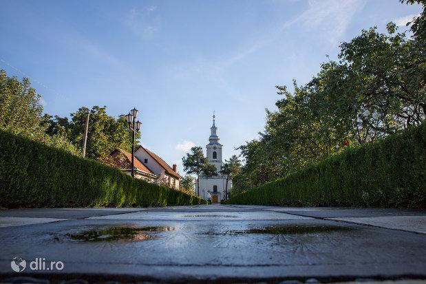 drumul-spre-biserica-greco-catolica-acoperamantul-maicii-domnului-din-livada-satu-mare.jpg