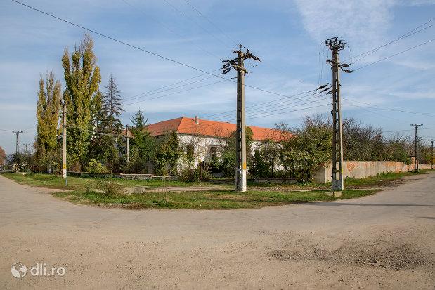 drumul-spre-castelul-zichy-din-diosig-judetul-bihor.jpg