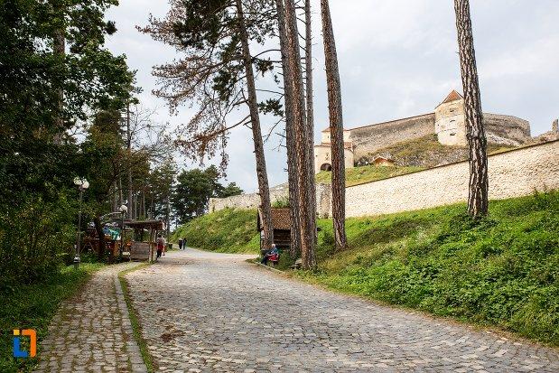 drumul-spre-cetatea-rasnovului-judetul-brasov.jpg