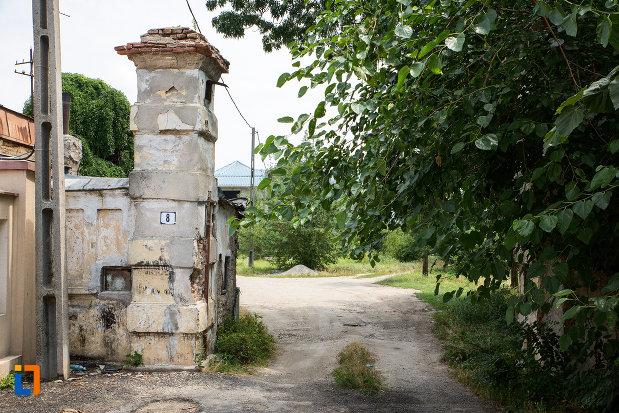 drumul-spre-conacul-calinescu-din-mihailesti-judetul-giurgiu.jpg
