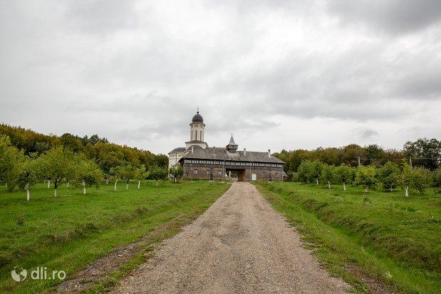 drumul-spre-manastirea-marius-judetul-satu-mare.jpg